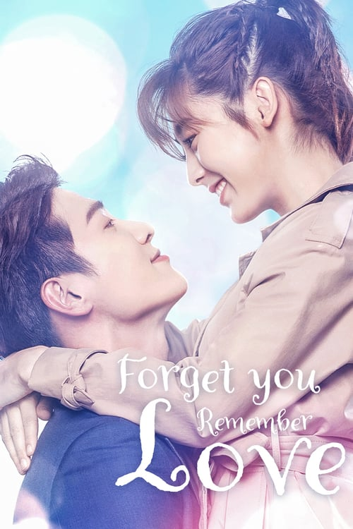 Forgetting You, Remembering Love